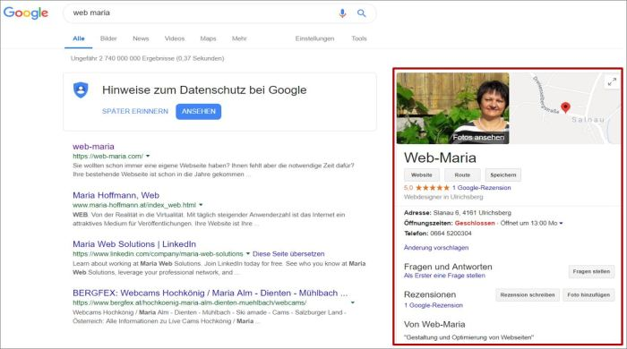 web-maria google my business